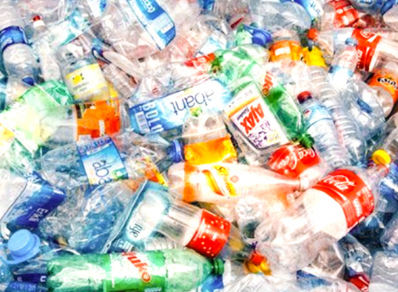 The Way to Eliminate Plastic for Good