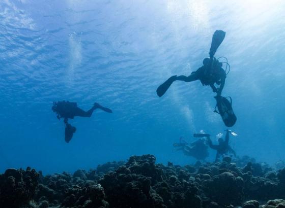 World's largest underwater clean-up