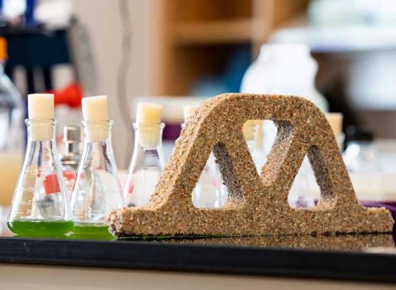 Scientists create living concrete using bacteria