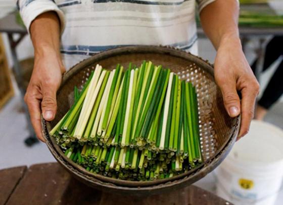 Tien's eco-friendly straws
