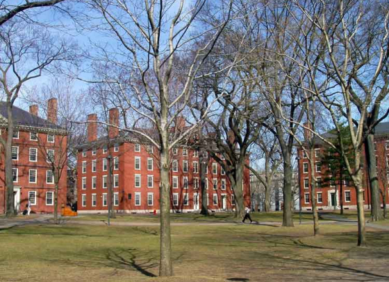 Harvard, Yale faces federal investigation over foreign funding