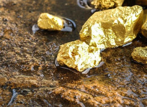GSI discovers new gold deposits